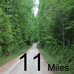 Completed the Umstead Coalition 11 mile!