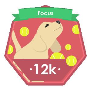 Puppy Focus